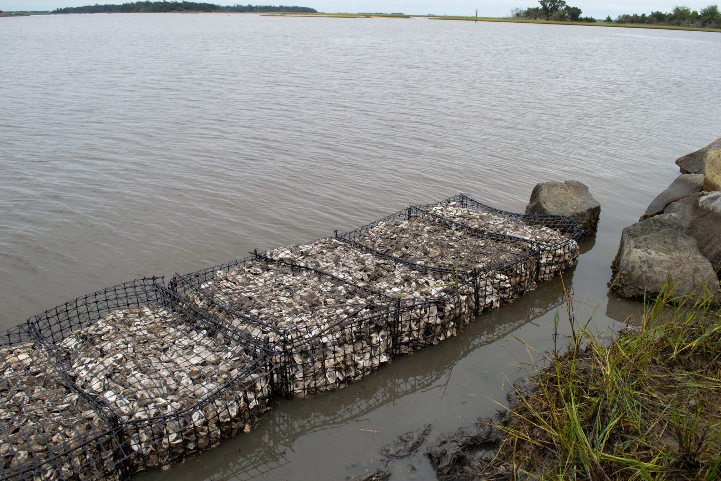 Building Living Shorelines with Oyster Shells